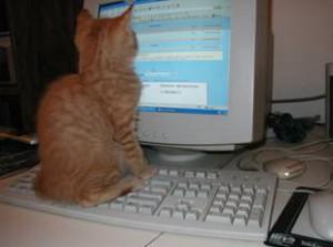 Вредно ли читать с компьютера?
