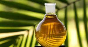 Вредно ли пальмовое масло?