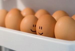 Вредны ли яйца?
