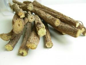Вреден ли корень солоки?