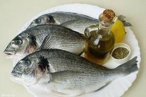 Вредна ли рыба?