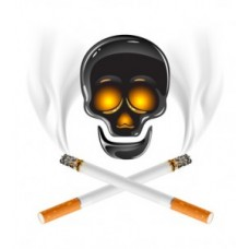Чем вреден никотин?